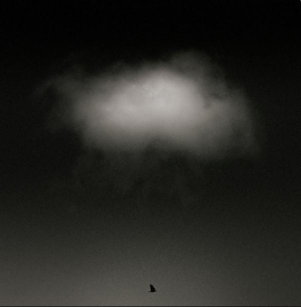 Denis Duclos - Alex - CdF Papier monochrome